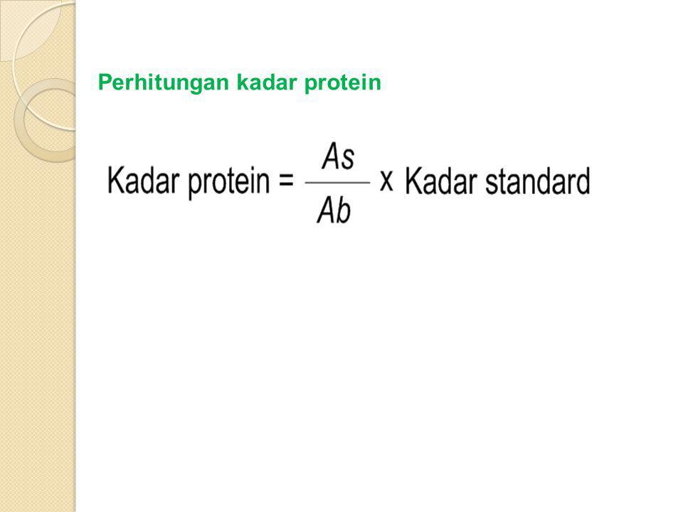 Perhitungan kadar protein