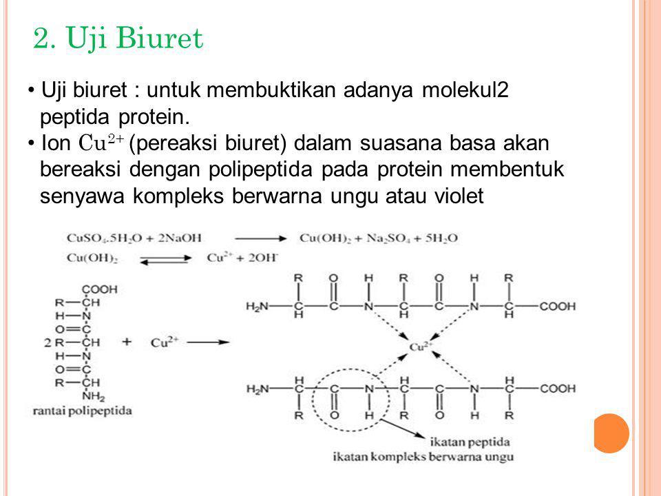 2. Uji Biuret Uji biuret : untuk membuktikan adanya molekul2