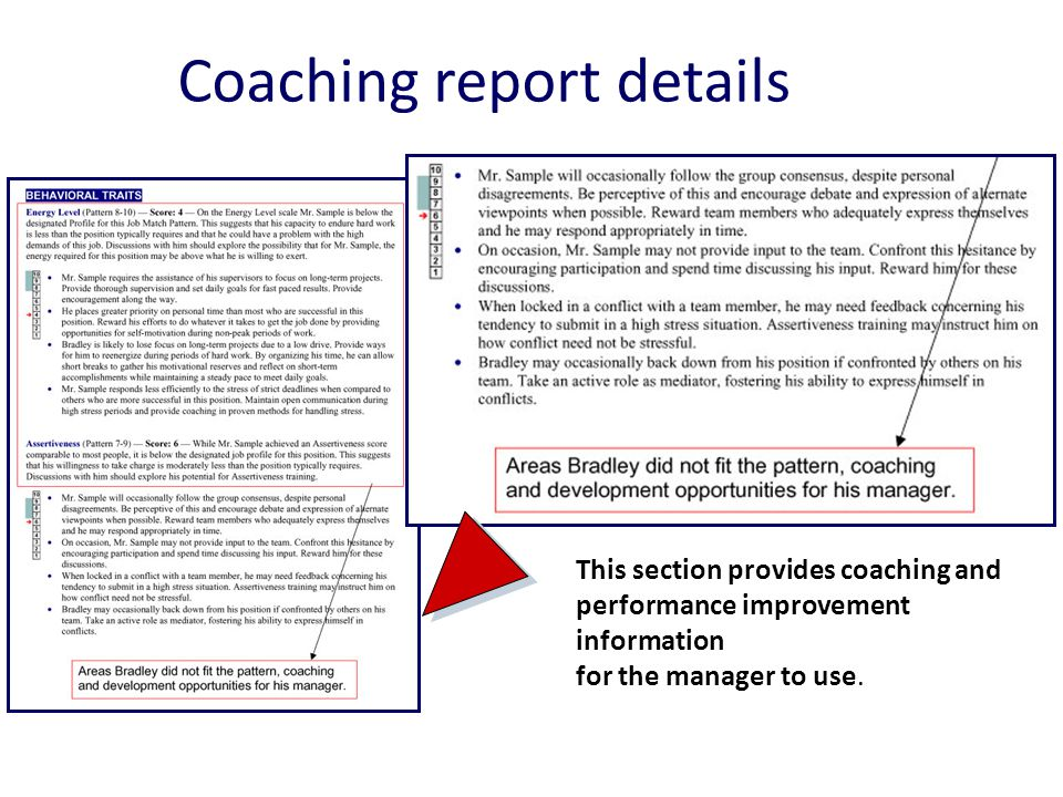 Coaching report details