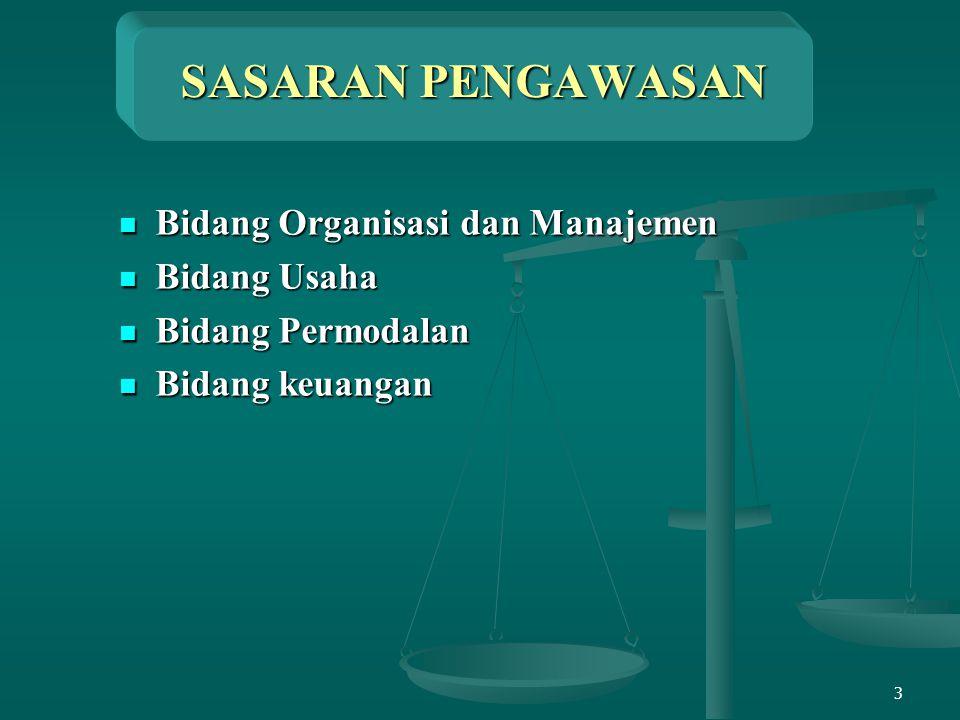 SASARAN PENGAWASAN Bidang Organisasi dan Manajemen Bidang Usaha
