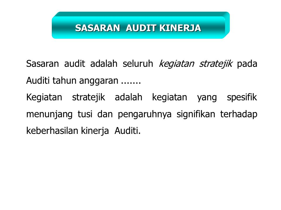 SASARAN AUDIT KINERJA