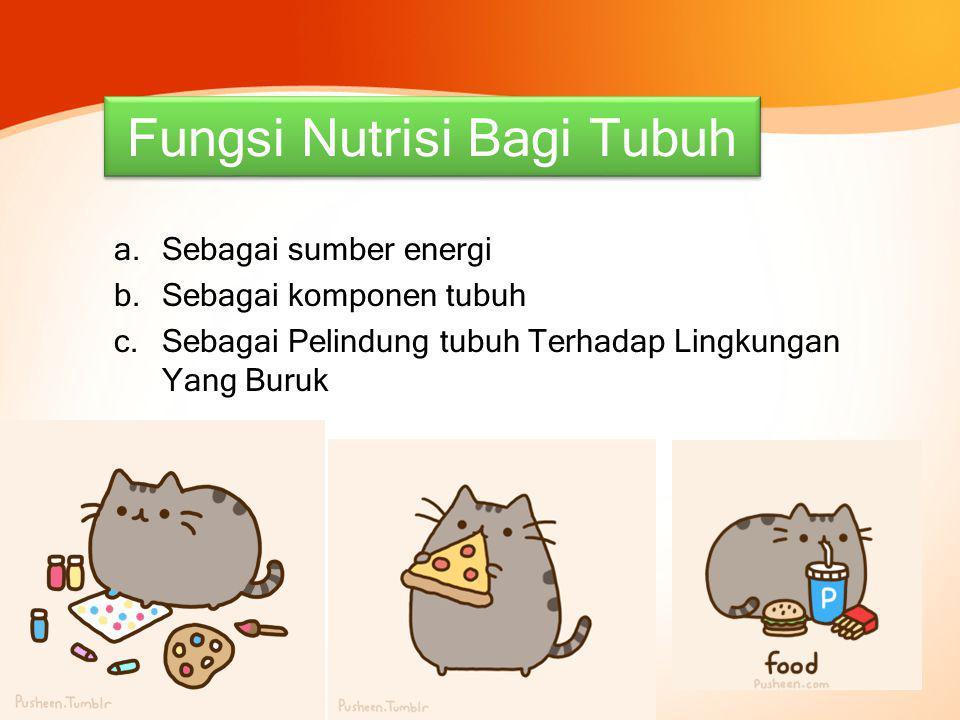 Fungsi Nutrisi Bagi Tubuh