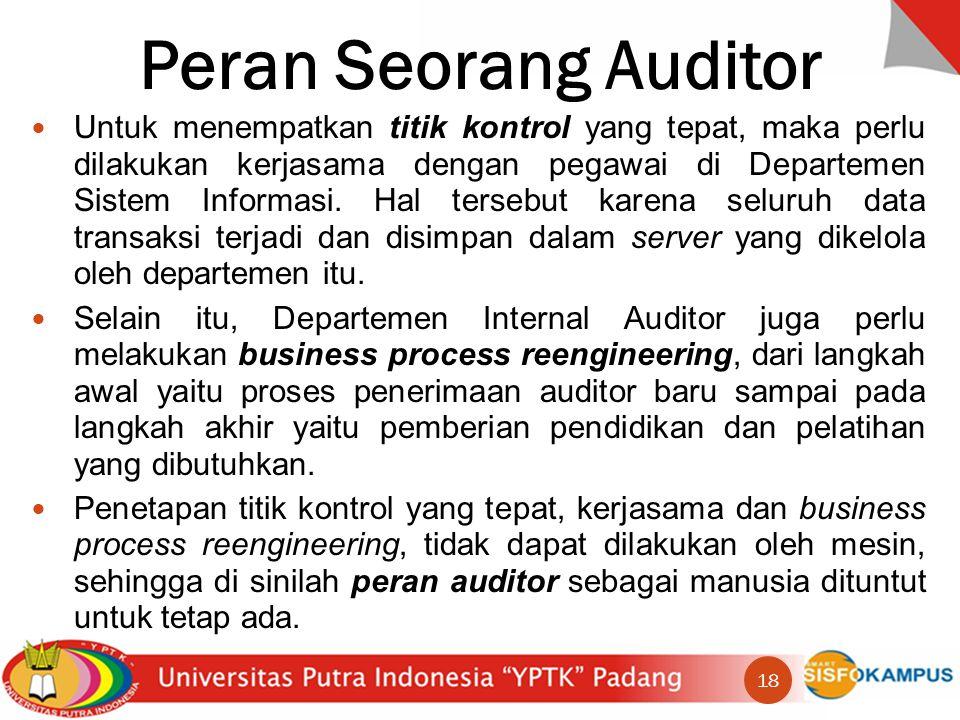 Peran Seorang Auditor