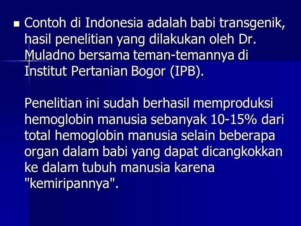 Contoh di Indonesia adalah babi transgenik, hasil penelitian yang dilakukan oleh Dr.