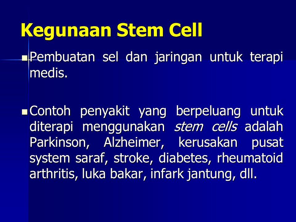 Kegunaan Stem Cell Pembuatan sel dan jaringan untuk terapi medis.