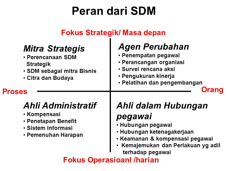 Peran dari SDM Agen Perubahan Mitra Strategis Ahli Administratif