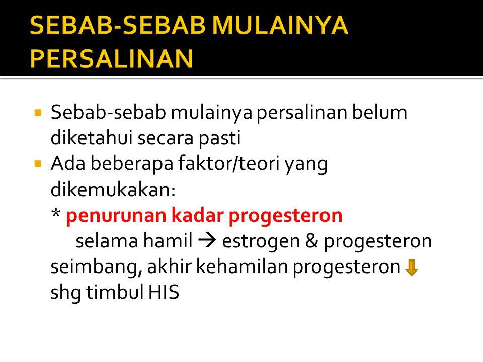 SEBAB-SEBAB MULAINYA PERSALINAN
