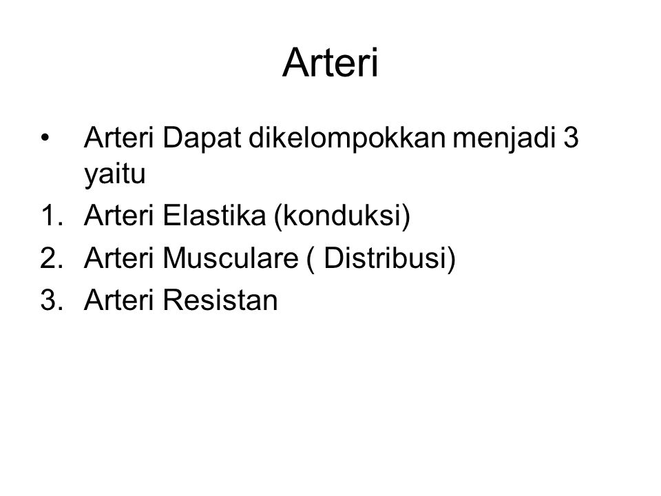 Arteri Arteri Dapat dikelompokkan menjadi 3 yaitu