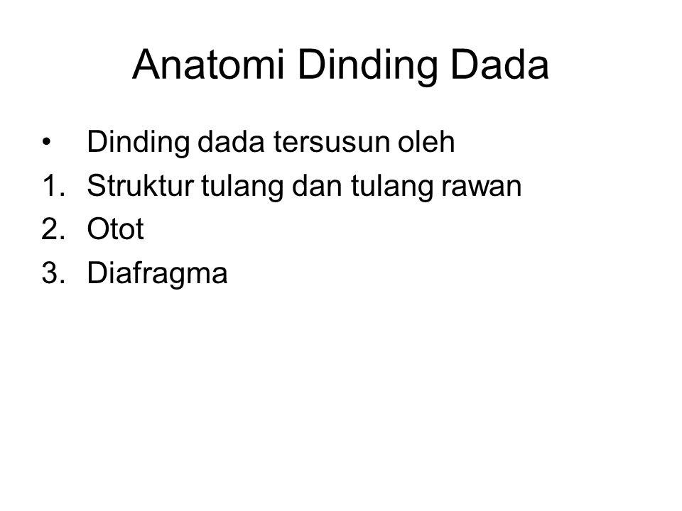 Anatomi Dinding Dada Dinding dada tersusun oleh