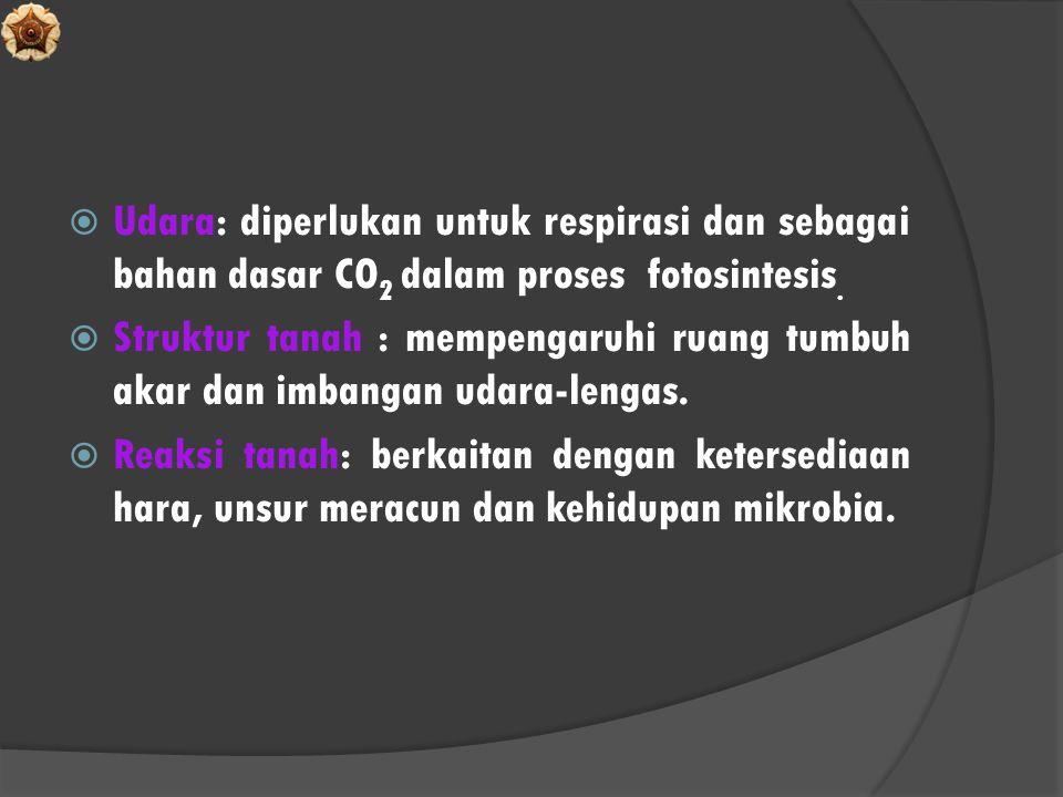 Udara: diperlukan untuk respirasi dan sebagai bahan dasar CO2 dalam proses fotosintesis.
