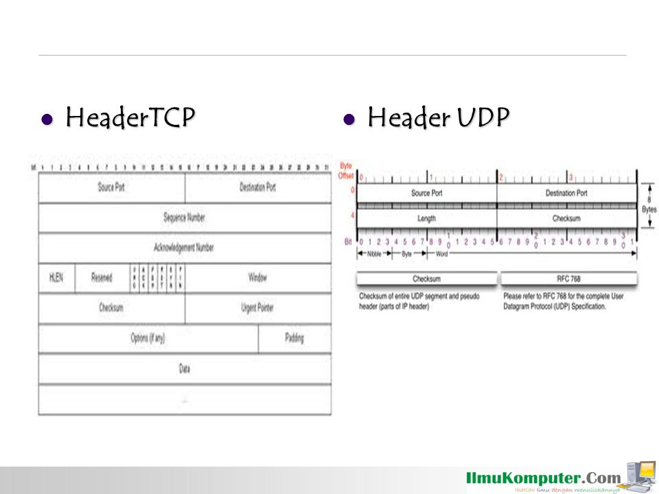 HeaderTCP Header UDP