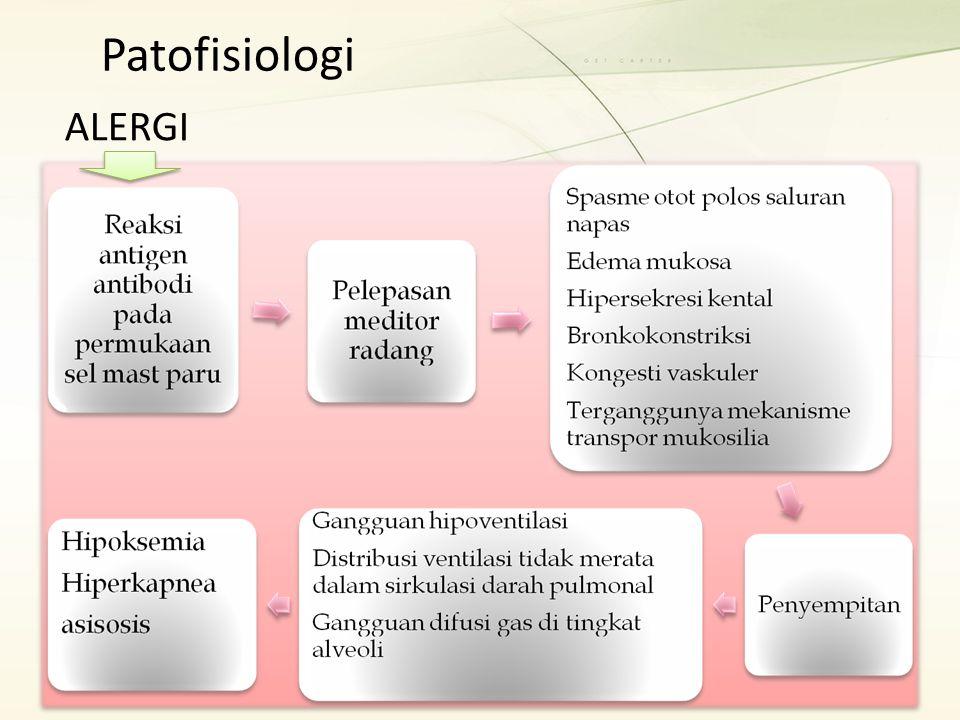 Patofisiologi ALERGI
