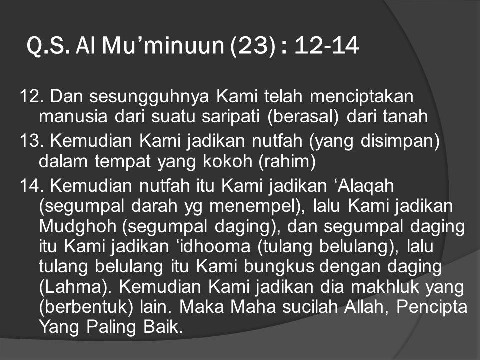 Q.S. Al Mu'minuun (23) : 12-14