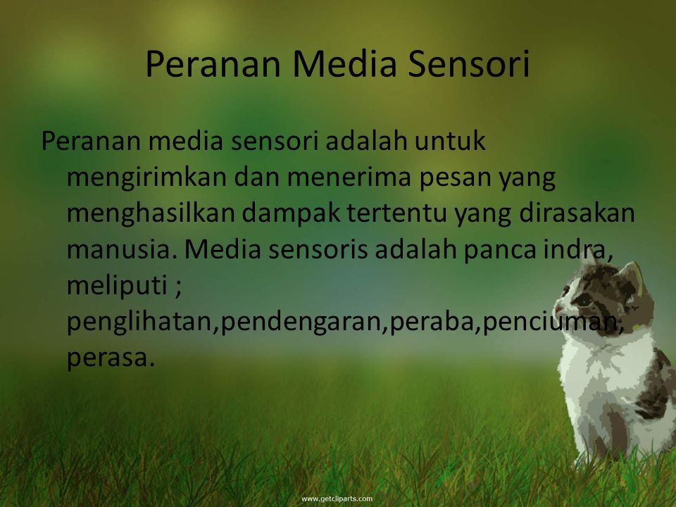 Peranan Media Sensori