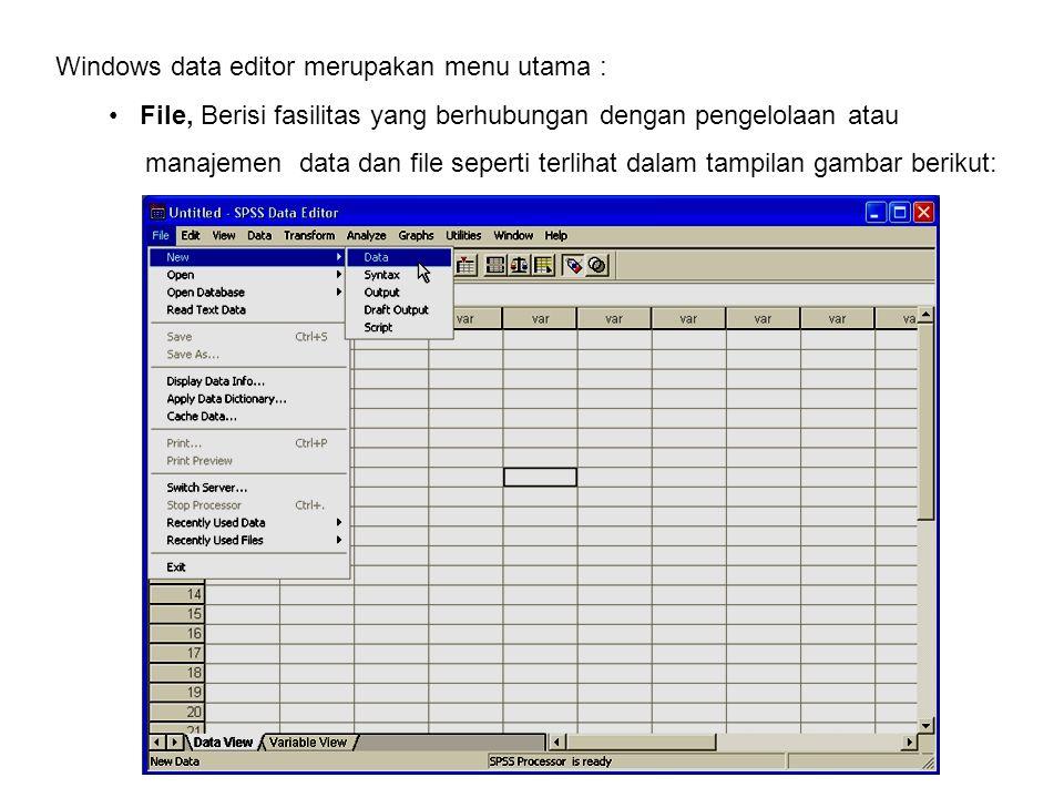 Windows data editor merupakan menu utama :