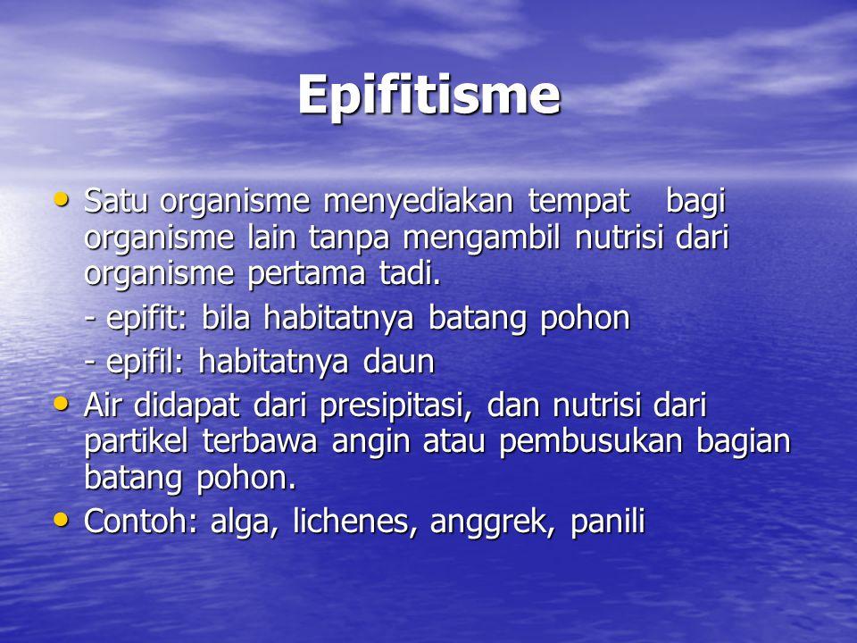Epifitisme Satu organisme menyediakan tempat bagi organisme lain tanpa mengambil nutrisi dari organisme pertama tadi.