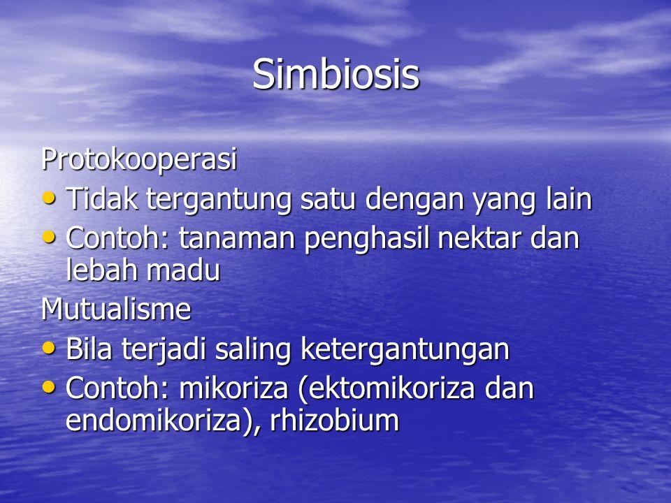 Simbiosis Protokooperasi Tidak tergantung satu dengan yang lain