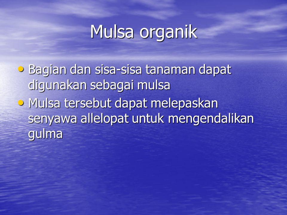 Mulsa organik Bagian dan sisa-sisa tanaman dapat digunakan sebagai mulsa.
