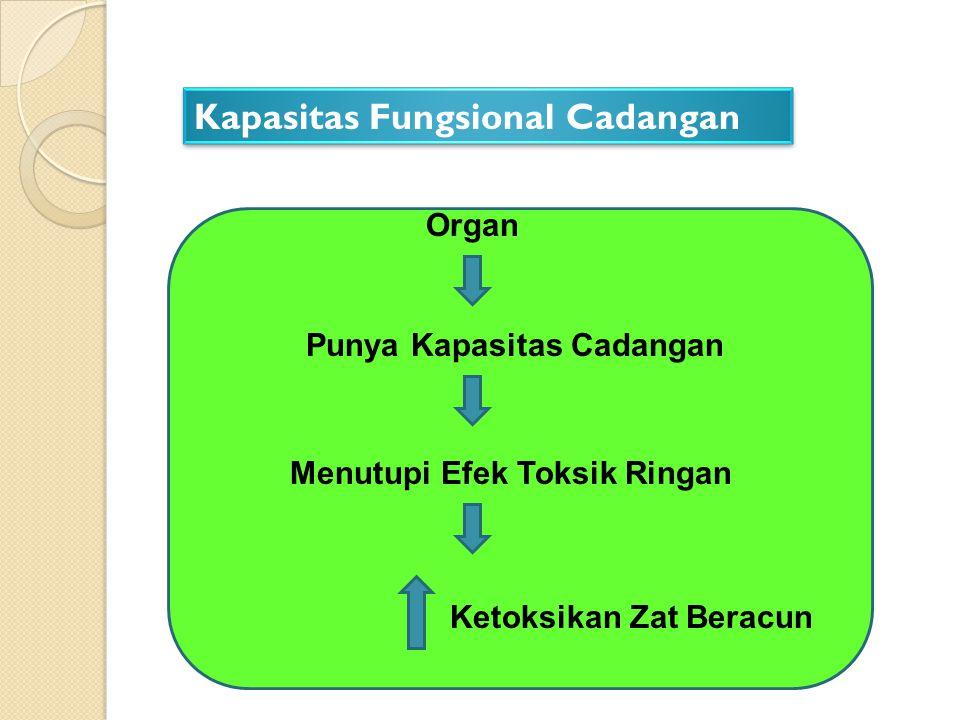 Kapasitas Fungsional Cadangan