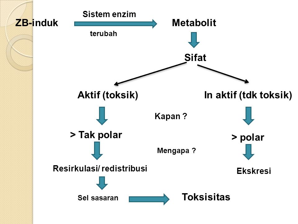 ZB-induk Metabolit Sifat Aktif (toksik) In aktif (tdk toksik)
