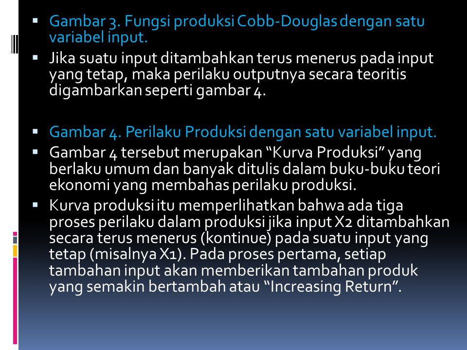 Gambar 3. Fungsi produksi Cobb-Douglas dengan satu variabel input.