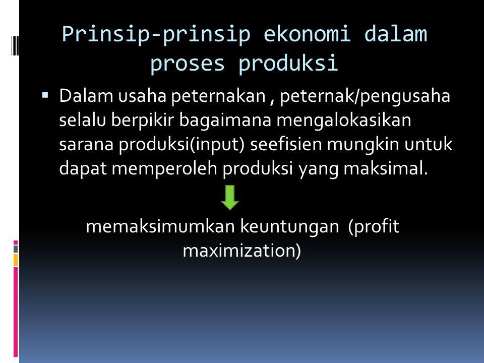 Prinsip-prinsip ekonomi dalam proses produksi
