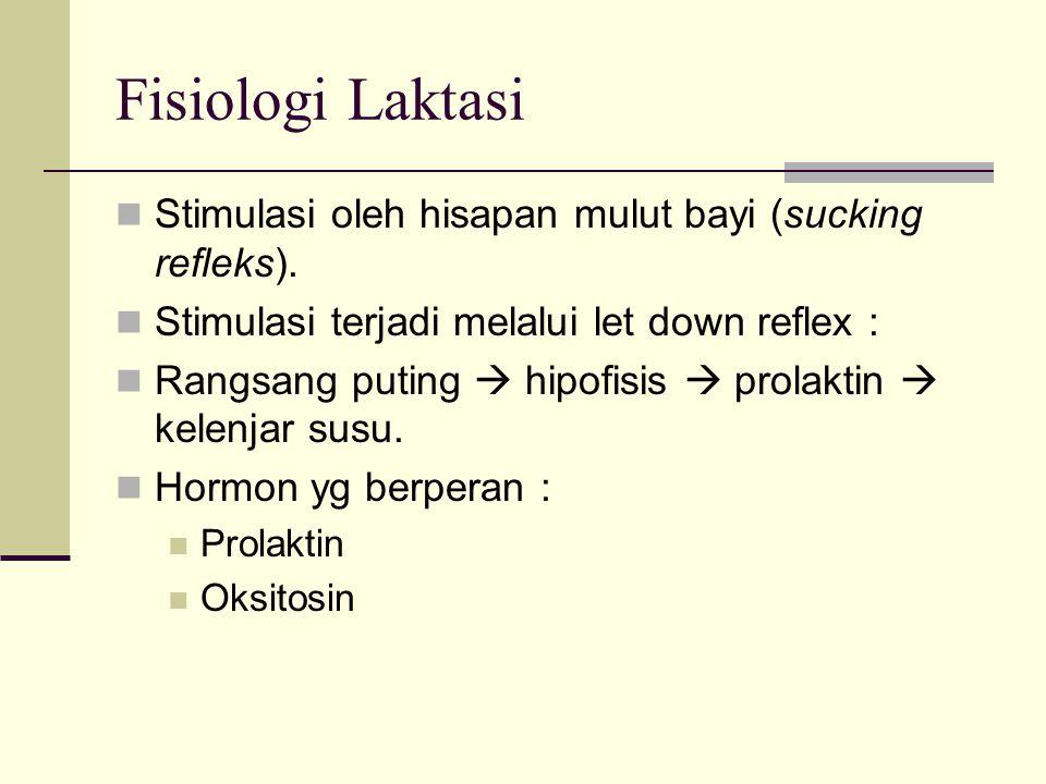 Fisiologi Laktasi Stimulasi oleh hisapan mulut bayi (sucking refleks).