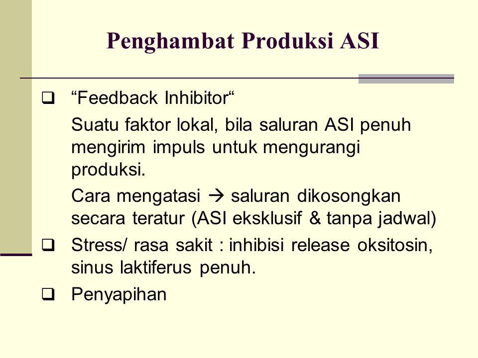 Penghambat Produksi ASI