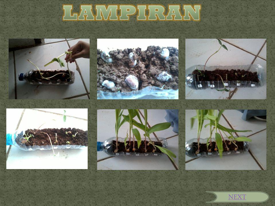 LAMPIRAN NEXT