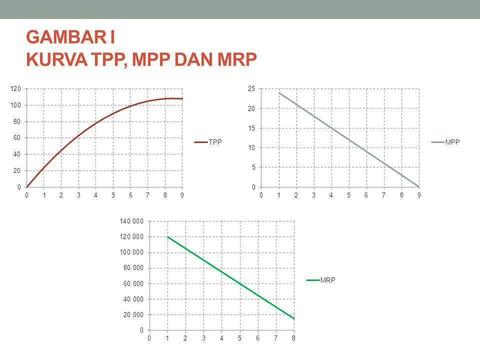 GAMBAR I KURVA TPP, MPP DAN MRP