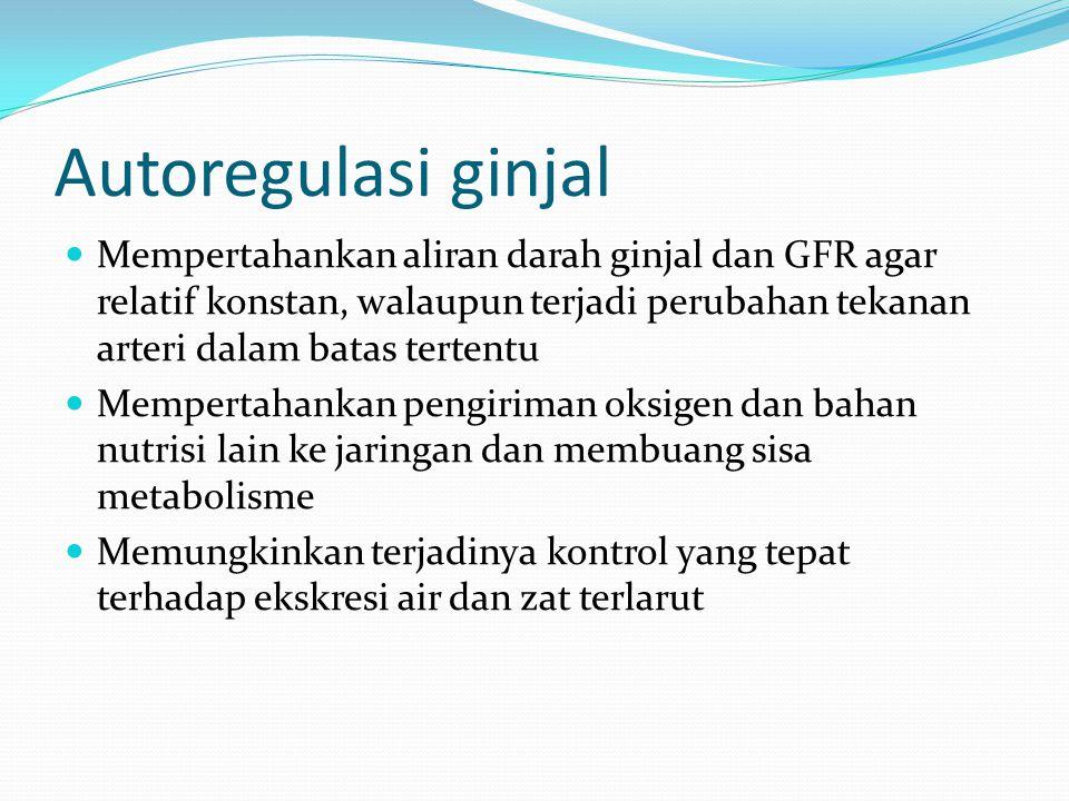 Autoregulasi ginjal Mempertahankan aliran darah ginjal dan GFR agar relatif konstan, walaupun terjadi perubahan tekanan arteri dalam batas tertentu.