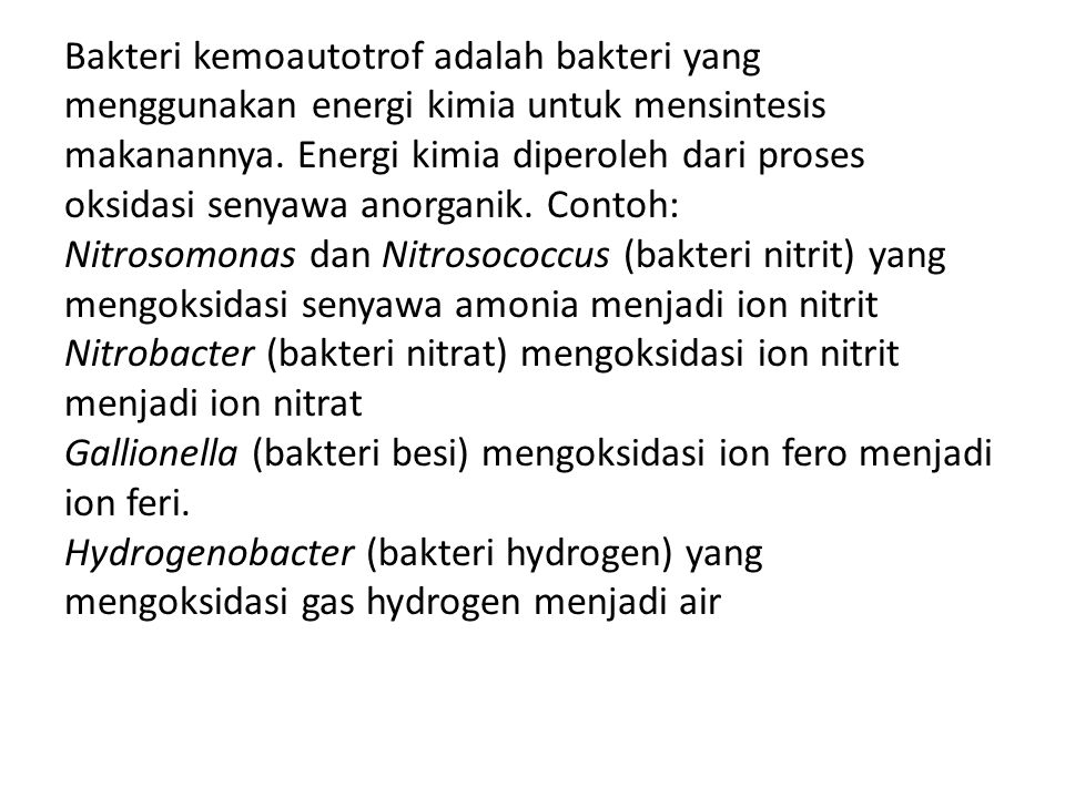 Bakteri kemoautotrof adalah bakteri yang menggunakan energi kimia untuk mensintesis makanannya.