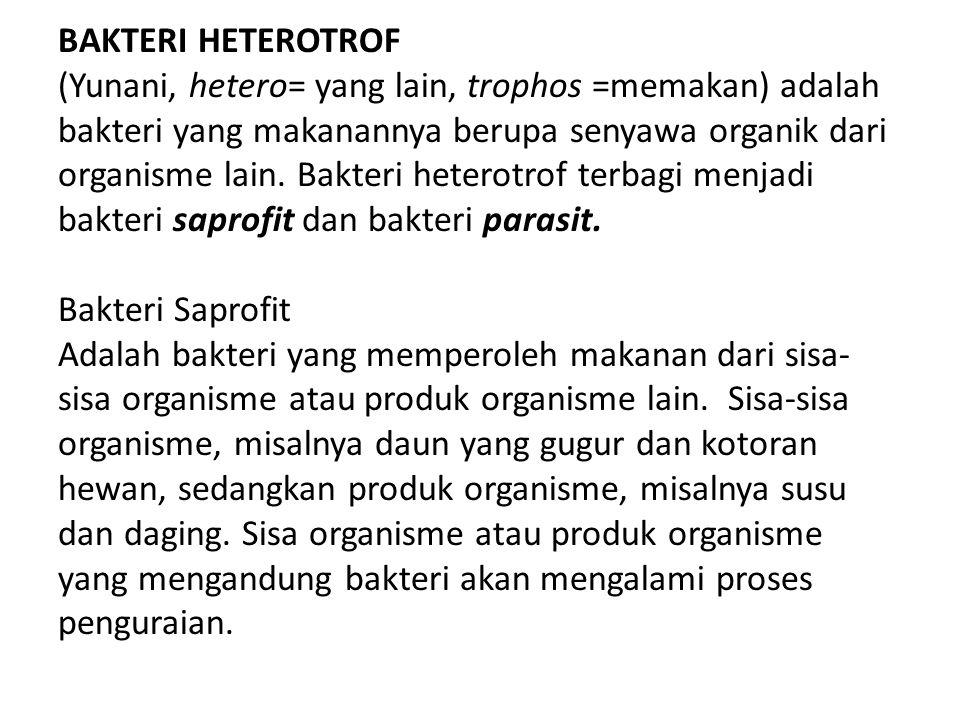 BAKTERI HETEROTROF (Yunani, hetero= yang lain, trophos =memakan) adalah bakteri yang makanannya berupa senyawa organik dari organisme lain.