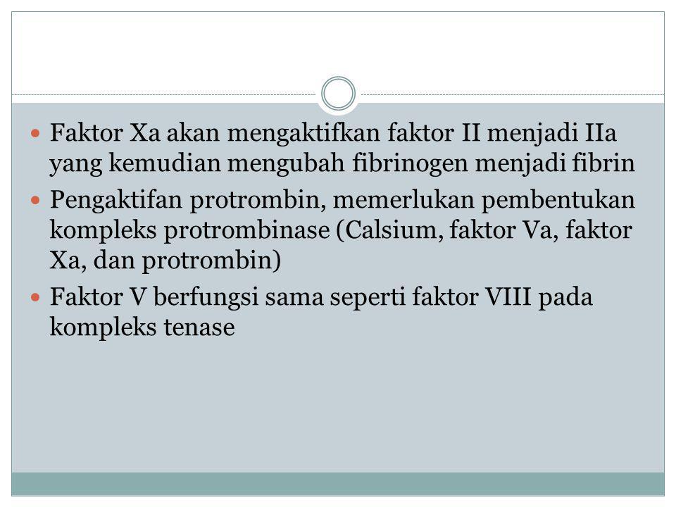 Faktor Xa akan mengaktifkan faktor II menjadi IIa yang kemudian mengubah fibrinogen menjadi fibrin