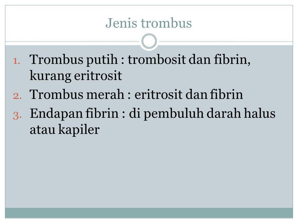 Jenis trombus Trombus putih : trombosit dan fibrin, kurang eritrosit