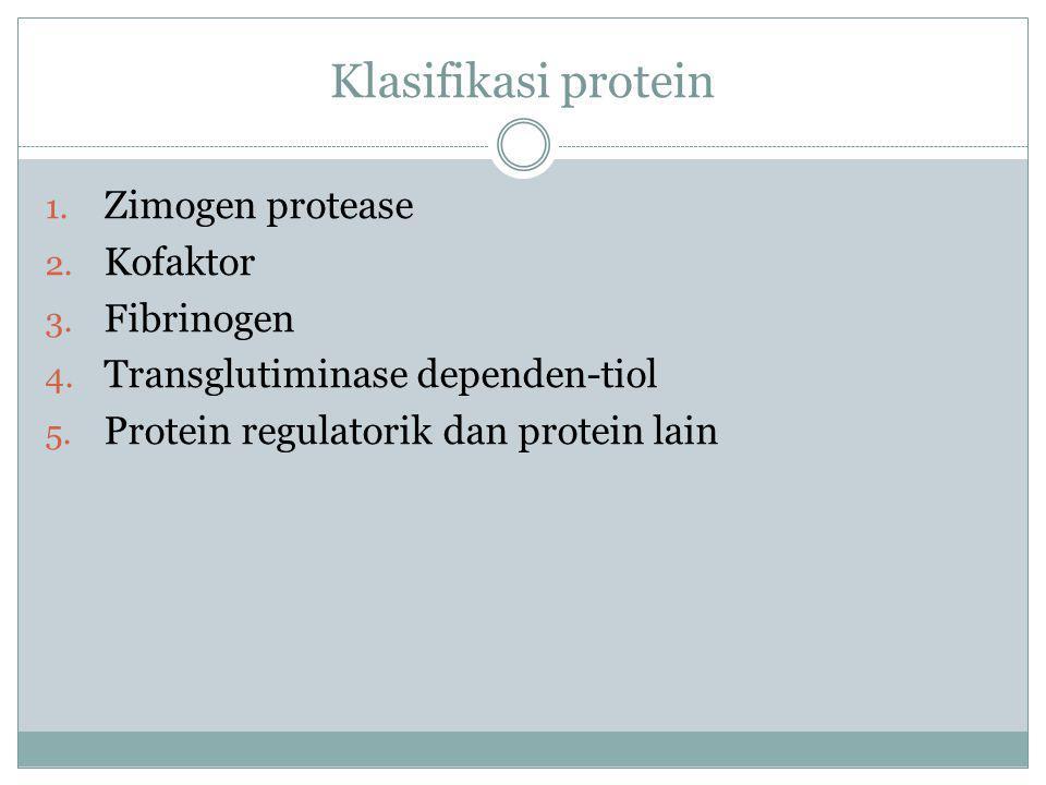 Klasifikasi protein Zimogen protease Kofaktor Fibrinogen
