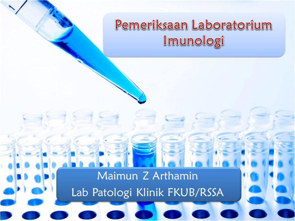 Maimun Z Arthamin Lab Patologi Klinik FKUB/RSSA