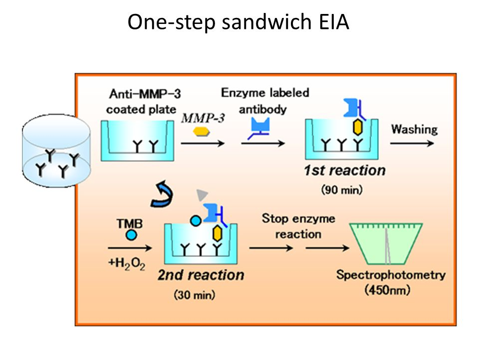 One-step sandwich EIA
