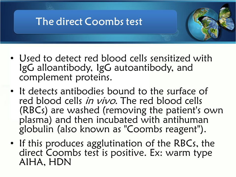The direct Coombs test Used to detect red blood cells sensitized with IgG alloantibody, IgG autoantibody, and complement proteins.