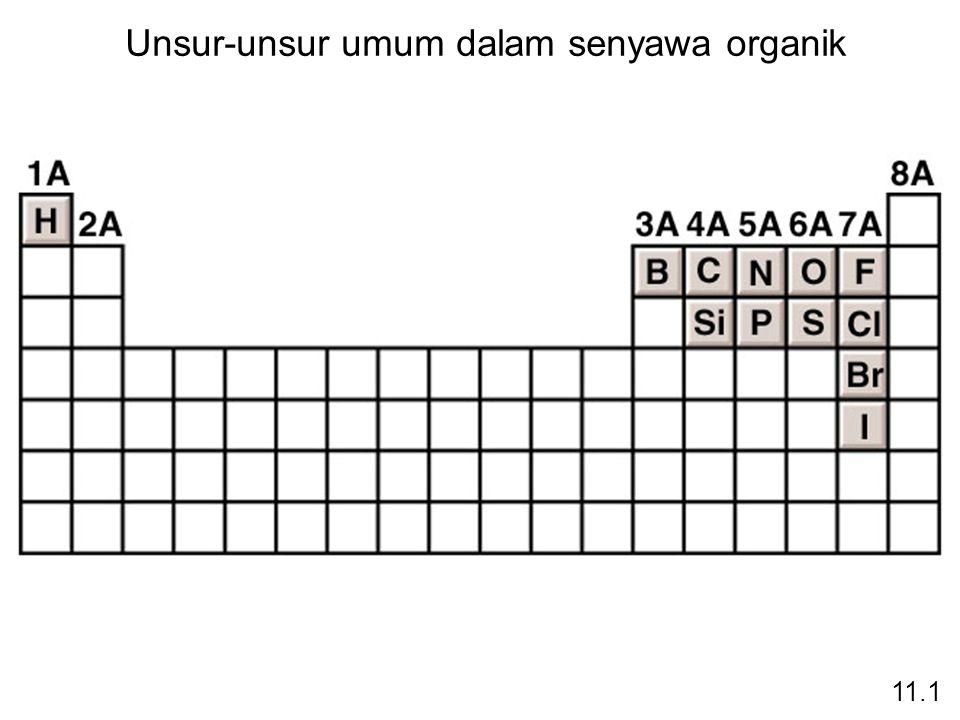 Unsur-unsur umum dalam senyawa organik