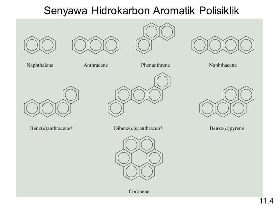 Senyawa Hidrokarbon Aromatik Polisiklik