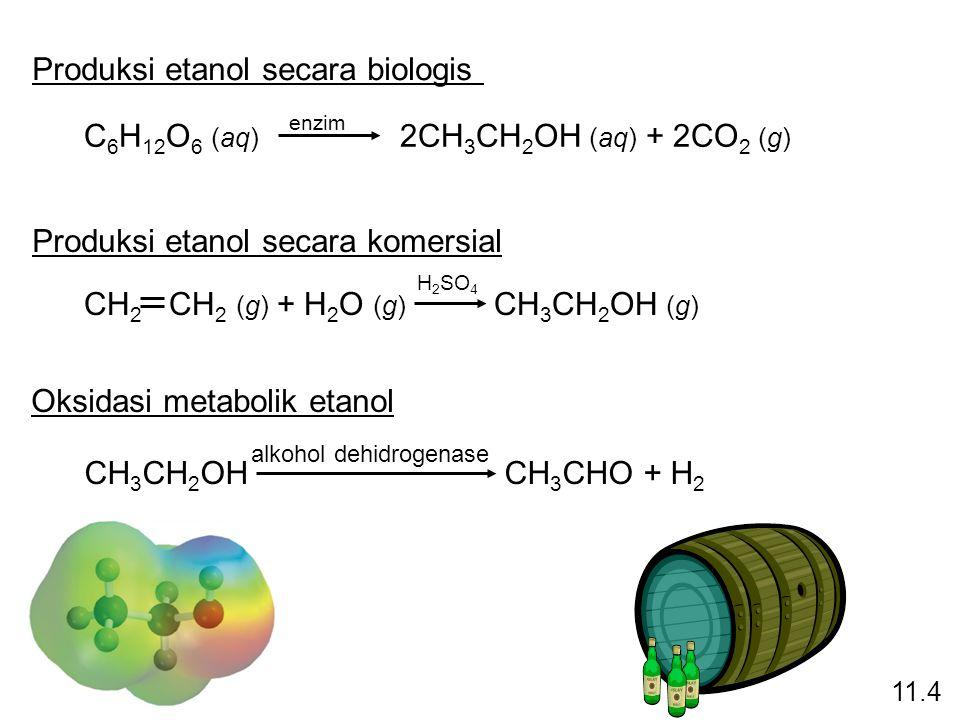 Produksi etanol secara biologis