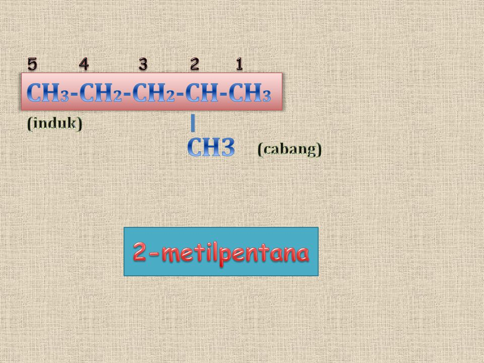 5 4 3 2 1 CH3-CH2-CH2-CH-CH3 (induk) CH3 (cabang) 2-metilpentana