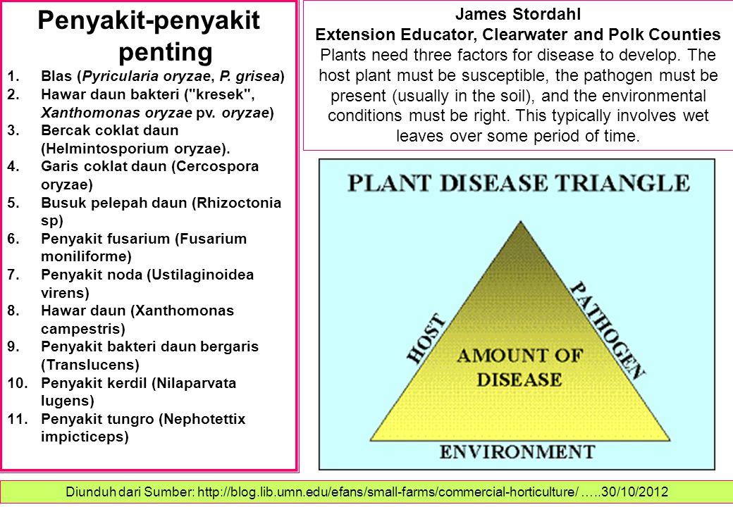 Penyakit-penyakit penting