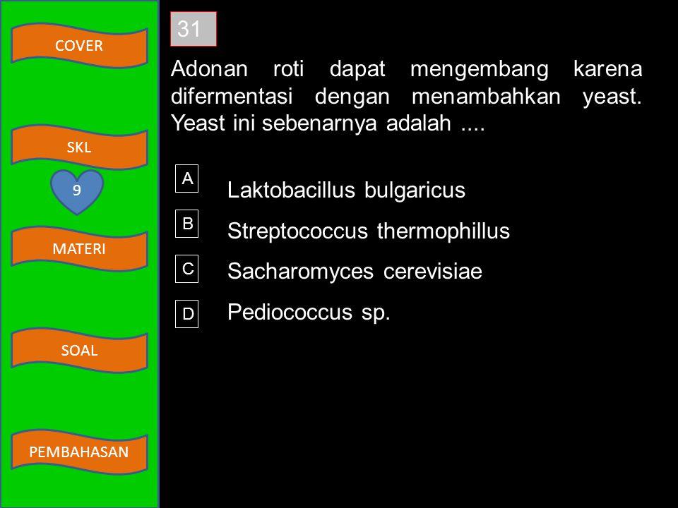 Laktobacillus bulgaricus Streptococcus thermophillus