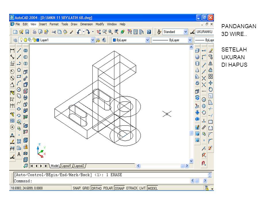 PANDANGAN 3D WIRE.. SETELAH UKURAN DI HAPUS