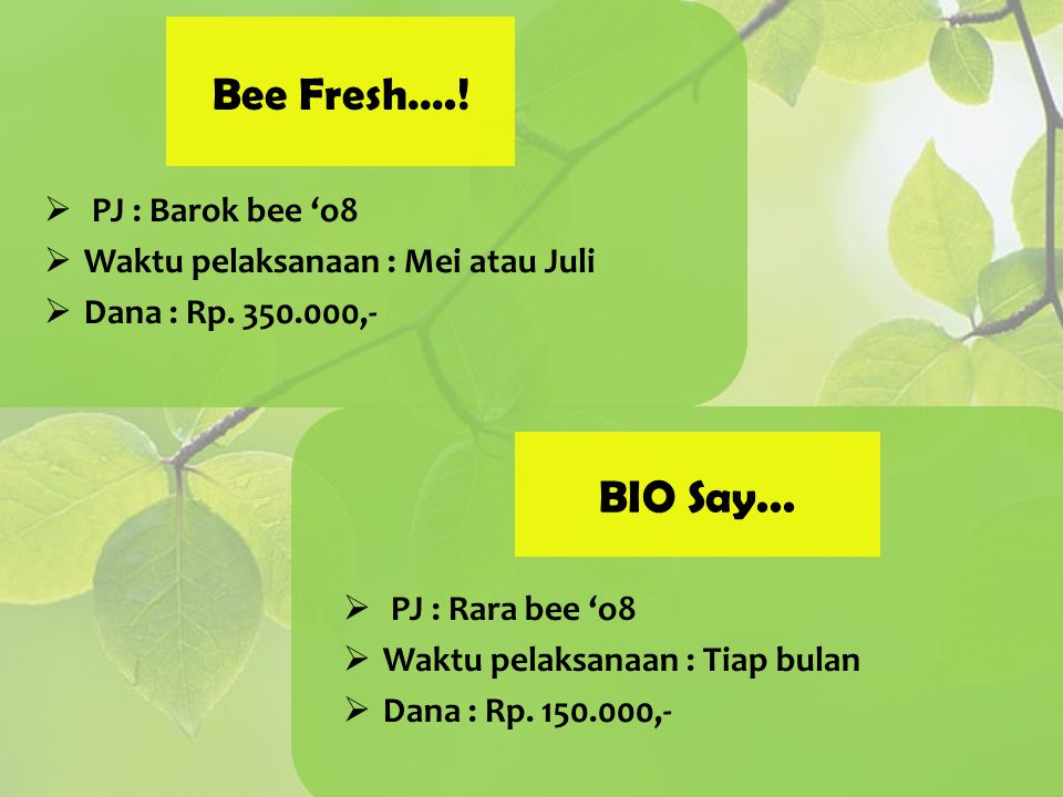 Bee Fresh….! BIO Say... PJ : Barok bee 'o8