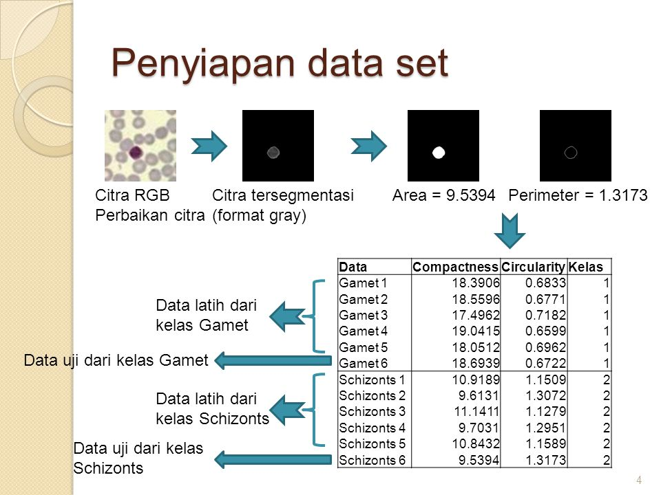 Penyiapan data set Citra RGB Perbaikan citra Citra tersegmentasi