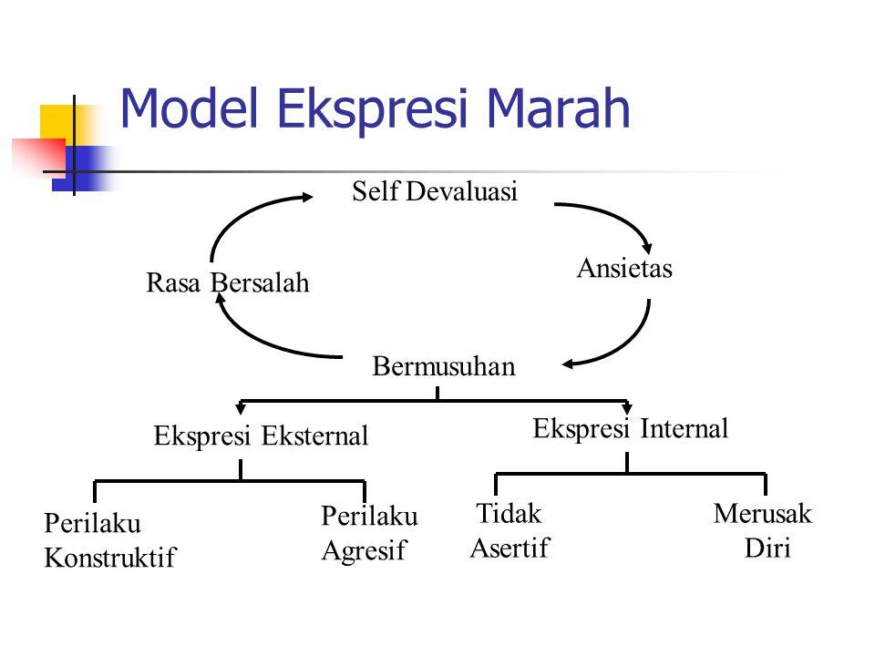 Model Ekspresi Marah Self Devaluasi Ansietas Rasa Bersalah Bermusuhan