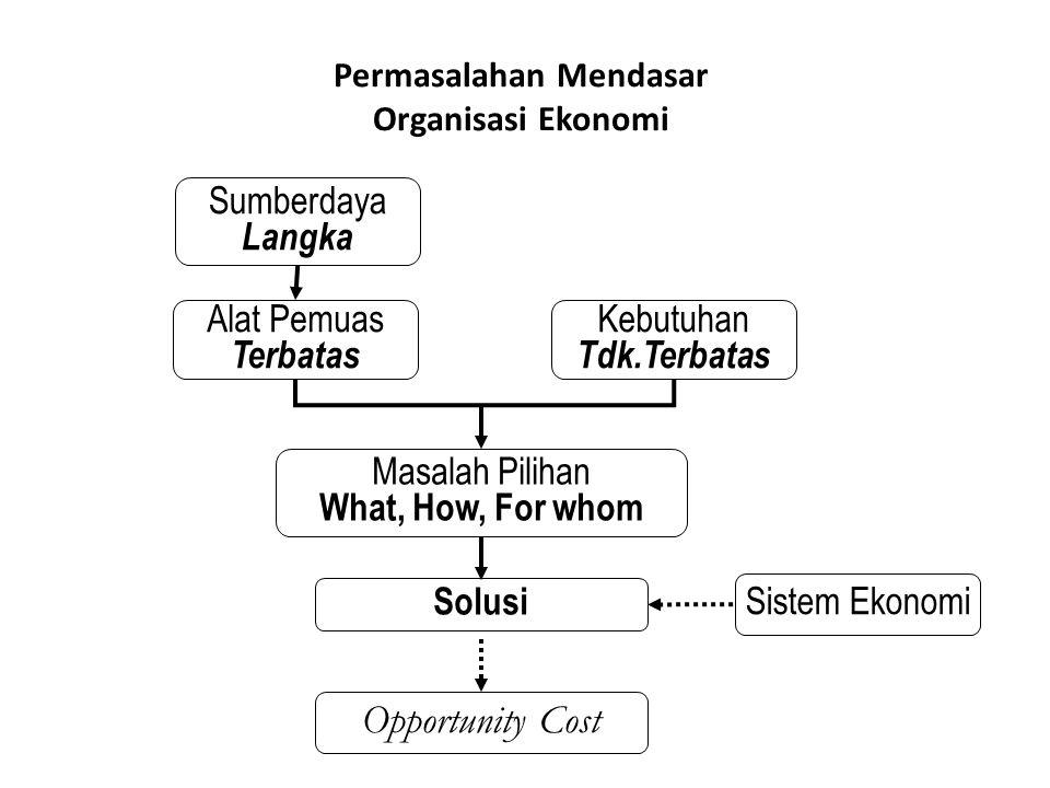 Permasalahan Mendasar Organisasi Ekonomi